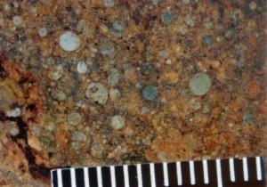 A chondritic meteorite