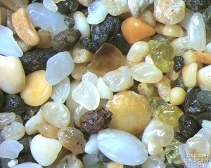 Sand from Kalalau Beach in Hawaii seen under a microscope